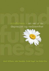 Mindfulness av Jon Kabat-Zinn, Zindel Segal, John Teasdale og Mark Williams (Heftet)