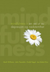 Mindfulness av Jon Kabat-Zinn, Zindel Segal, John Teasdale og Mark Williams (Ebok)